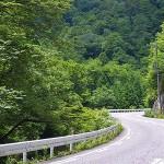 羅漢峡の深緑