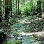 津和野街道の石畳