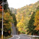 羅漢峡の紅葉
